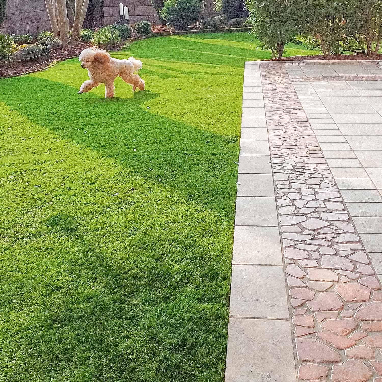 come-realizzare-giardino-erba-sintetica-udine