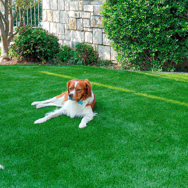pulizia-manutenzione-giardino-erba-sintetica-udine